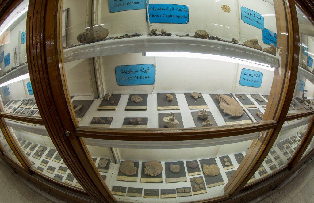 المتحف الجيواوجي المصري